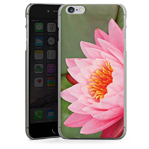 Apple iPhone X Silikon Hülle Case Schutzhülle Seerose Blume Pink Hard Case anthrazit-klar