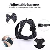 Rabbitgoo Adjustable Refletive Dog Harness Outdoor Pet Vest with Handle Easy Control for Small Dogs & Durable Material Black