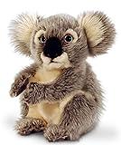 Lashuma Plüschtier Koala Bär, Keel Toys Kuscheltier sitzend ca. 20 cm