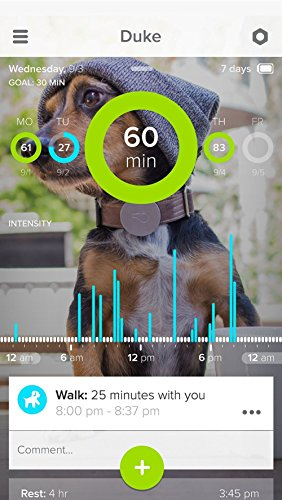 Whistle Activity Monitor For Dogs by Whistle 5