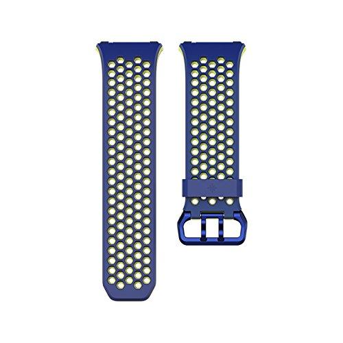 Fitbit Ionic Sportarmband, Blau, L