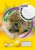 LANDRE 100050030 Schulheft 10er Pack A4 16 Blatt Lineatur 1