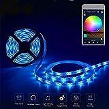 Striscia LED Fairy Lights 2m Striscia LED dimmerabile RGBW con Alexa Google Home Compatibile 2 Strisce 60LED wireless controllate da 4GHz Wifi IP67 Timing impermeabile e controllo vocale