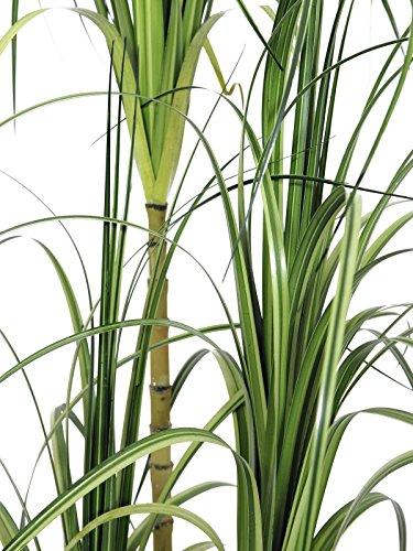 artplants – Künstlicher Dracaena Busch, Dekotopf, grün, 160 cm – Deko Drachenbaum Pflanze/Plastik Zimmerpflanze