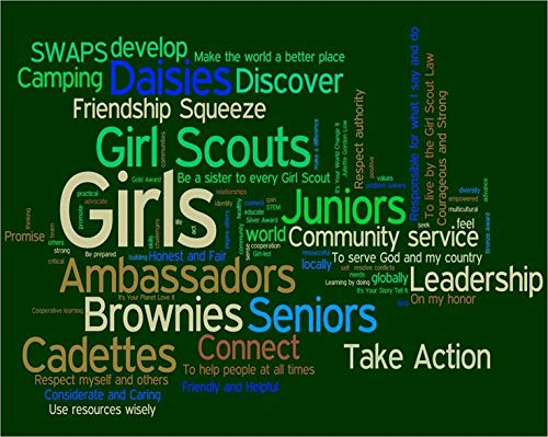 Wandaufkleber, Motiv: Scouts Swaps Developop Make The World A Better Place Friendship Girls Juniors Connect Take Action Brownies Schild Schriftzug Zitat Vinyl 12 Inches X 12 Inches Siehe Abbildung -
