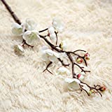 Tangbasi 1 ramo di prugna fiore artificiale fiori finti Home wedding Decor White