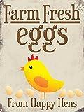 Grindstore Farm Fresh Eggs Blechschild 30,5x 40.7cm