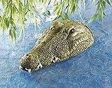 Garden-Mile Schwimmende Krokodil Kopf FC250-CO
