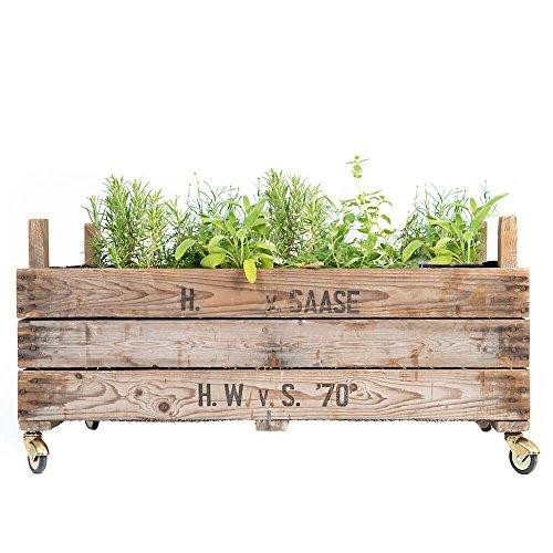 Hochbeet Mit Rollen Angebote Gartenhost De