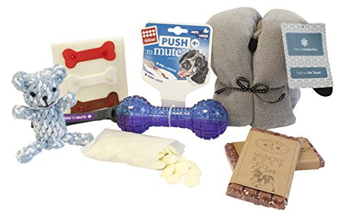 Pet Brands Boy Easter Gift Hamper for Dog
