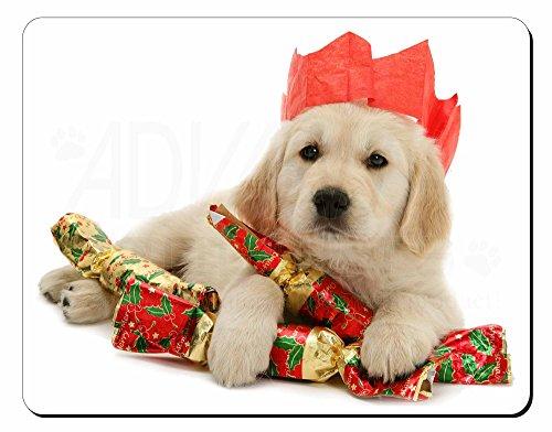 Preisvergleich Produktbild Christmas Golden Retriever Computer-Maus -Matte / pad Weihnachtsgeschenk
