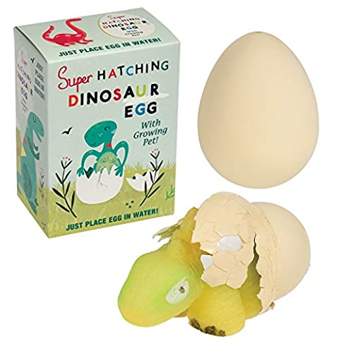 Hatch Your Own Dinosaur Magic Egg