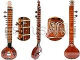 sitar Hemraj Fusion électrique sitar avec housse de rangement Gsm023g