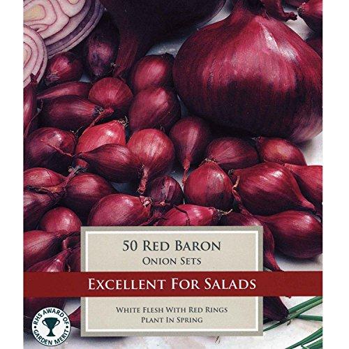 """50x Rote Gemüse Zwiebeln """"Red Baron"""" Steckzwiebeln zum Anbauen"""