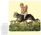 Image de Le chat