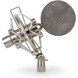 Auna CRM15 Micrófono de cinta plateado XLR vintage