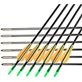 KKY Glass Fiber Plastic Fletching Bow Arrows Hunting Archery, 30-inch, 6mm, 12 Pieces (Multicolour)