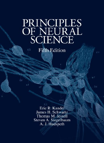 Principles of Neural Science, Fifth Edition (Principles of Neural Science (Kandel)) (English Edition)