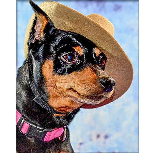 GAGALAM Pintura Números Adultos Cachorro Sombrero