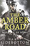 The Amber Road: Warrior of Rome: Book 6