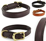 Pear - Tannery Classic-Line Hundehalsband aus weichem Vollrindleder, XS 31-41cm, schokoladenbraun