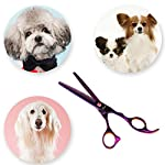 Fancyli Dog Grooming Scissors, Rainbow 7 inches Pet Stainless Steel Curved Scissor Suit Provided With Curved Thinning… 12