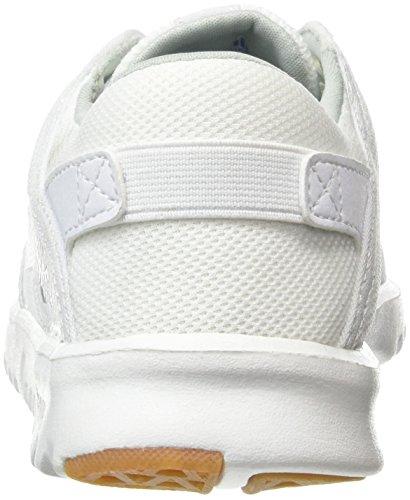 Etnies Herren Scout Sneaker White (White/Gum104)