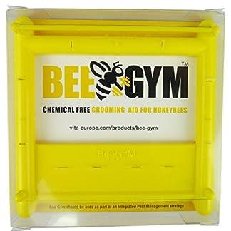 Bee Gym - chemical free Varroa Mite control for beekeepers, beehive use, bee colonies, apiaries, bees, honeybees. Bee Gym – chemical free Varroa Mite control for beekeepers, beehive use, bee colonies, apiaries, bees, honeybees. 510QHucIbPL