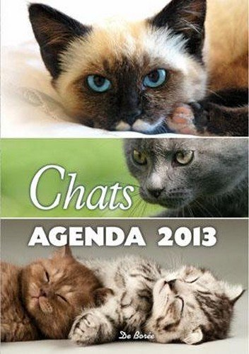 Chats Agenda 2013