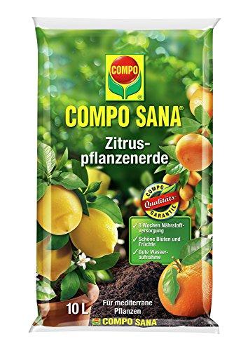 compo-11671-sana-arboles-de-citricos-tierra-10-l