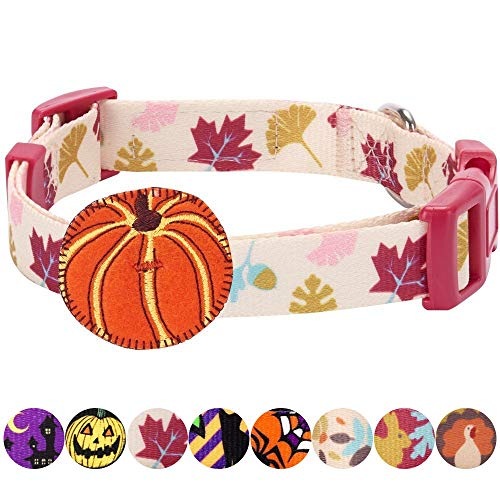 Blueberry Pet Fall Obsession Ginkgo Biloba Leaf Designer Dog Collar with Pumpkin, Medium, Neck 37cm-50cm, Adjustable Collars for Dogs