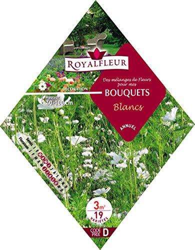 Royalfleur PFRK08340 Graines de Mélange de Fleurs pour Bouquets Blancs 3 m²