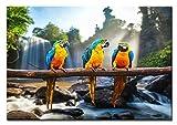 BILDERFABRIK – Wandbild Papageien 60 x 80 cm als XXL Kunstdruck auf Leinwand und Holzkeilrahmen I Moderne Drucktechnik für EIN detailreiches Erlebnis I Beste Qualität – Handgefertigt in Deutschland!