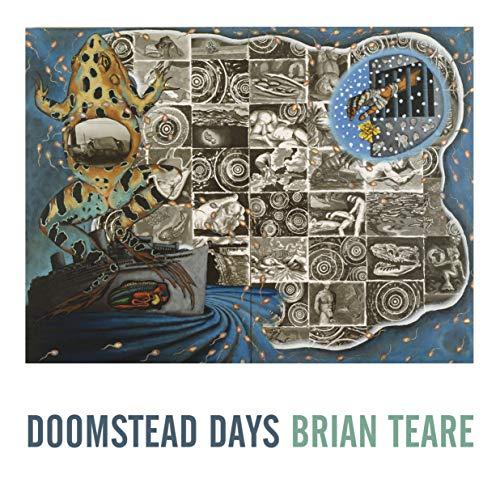 Doomstead Days por Brian Teare