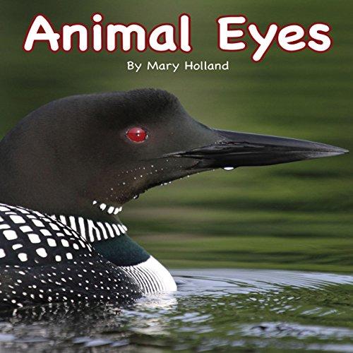 Animal Eyes  Audiolibri