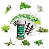 AeroGarden - Kit cápsulas semillas de hierbas aromaticas Gourmet, 9 cápsulas