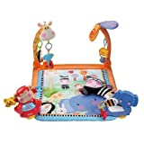 Fisher-Price Discover 'n Grow Open Play ...