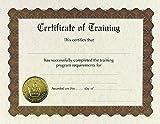 """Gran papeles. formación Stock mantel, papel de aluminio dorado y en relieve Certificado, 8.5""""x 11"""", 6Count (930300)"""
