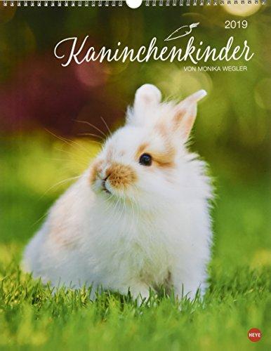 Kaninchenkinder Posterkalender - Kalender 2019