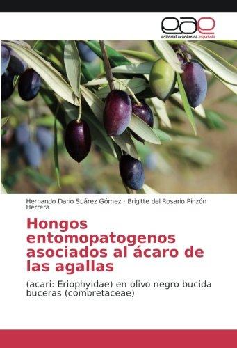 Hongos entomopatogenos asociados al ácaro de las agallas: (acari: Eriophyidae) en olivo negro bucida buceras (combretaceae)