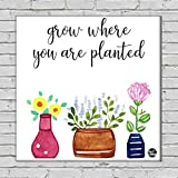 "Nutcase Framed Wall Art Decor Hanging Block Non-Fading Digital Painting For Living Room, Bedroom,Desk & Office Motivational Quote - 9""x9""( Screws Included) - Grow Where You Are Planted"