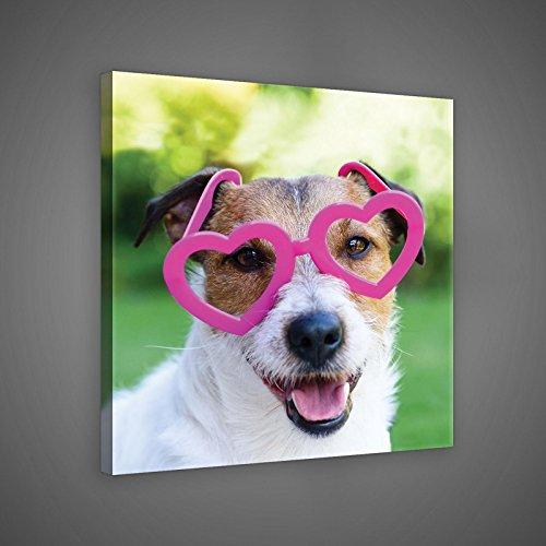 Welt-der-TräumeWANDBILD CANVASBILD Wandbild Leinwandbild Kunstdruck Canvas | Hund mit Rosa Brille | O2 (80cm. x 80cm.) | Canvas Picture Print PP10432O2-MS | Tiere Haustiere Hunde Hund Fröhlich Kinder