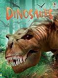 Dinosaurs (Usborne Beginners) (Beginners Series)