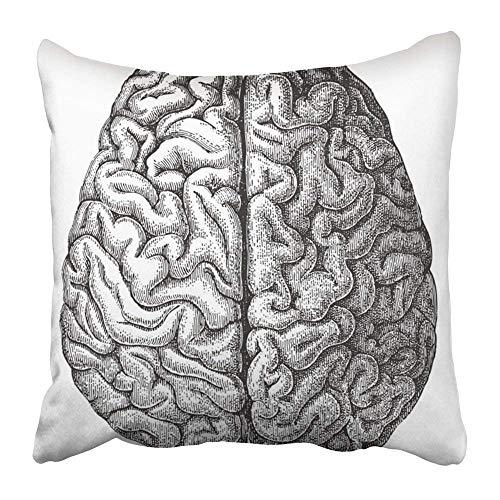 Throw Pillow Covers Print White Anatomy Human Brain Vintage from Meyers Konversations Lexikon 1897 Black Medical Old Antique 18 X 18 Inch Square Zipper Polyester Home Sofa Decorative Case 45cm (Konversation Sofa)