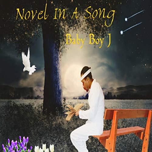Novel In A Song