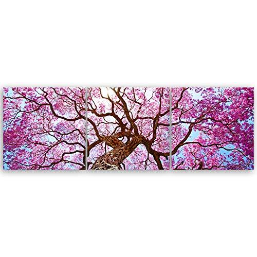 ge Bildet® hochwertiges Leinwandbild Panorama Naturbilder Landschaftsbilder - Rosa Lapacho Baum in Pocone - Brasilien - Natur Baum Pink Lila - 120 x 40 cm mehrteilig (3 teilig) 2212 B