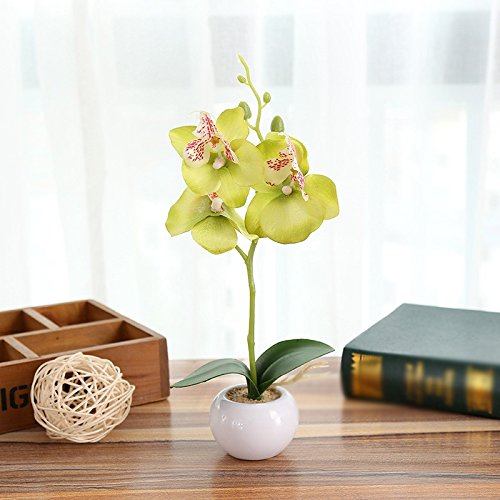 LIXIAOXIN Simulation False Topfpflanzen Schmetterling Orchideen Bonsai Dekoration Schmuck Grün