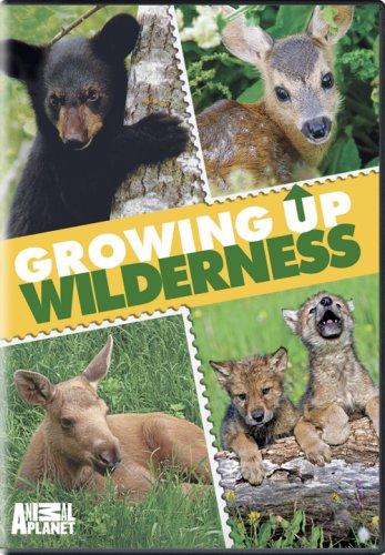 growing-up-wilderness-dvd-2008-region-1-us-import-ntsc
