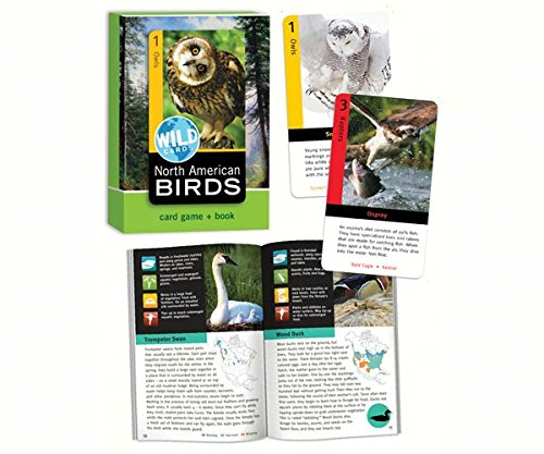 Bird Cage Press BCP315 North American Birds Wild Cards by Birdcage Press