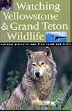 Watching Yellowstone & Grand Teton Wildlife